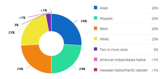 schools-dulles-jr-demographics